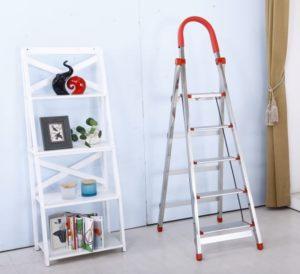 Balance ladder/step ladder
