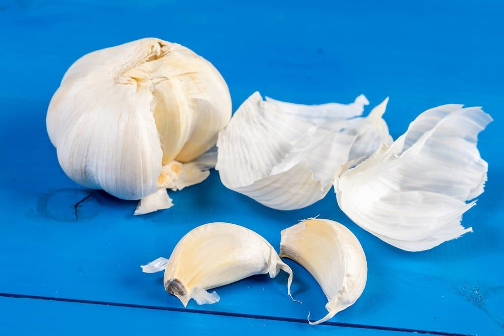 The extract of garlic
