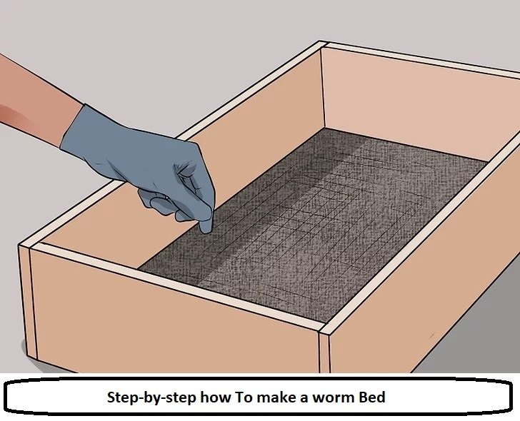 Step-by-step how To make a worm Bed