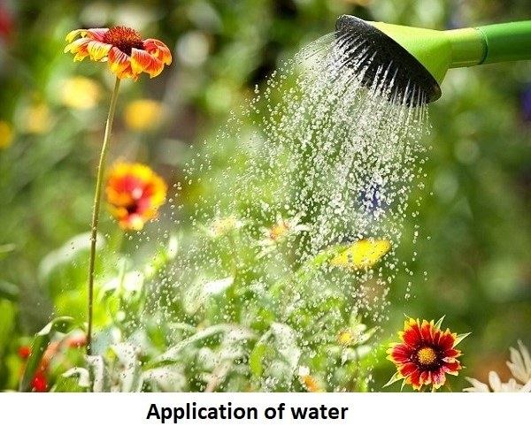 Application of water
