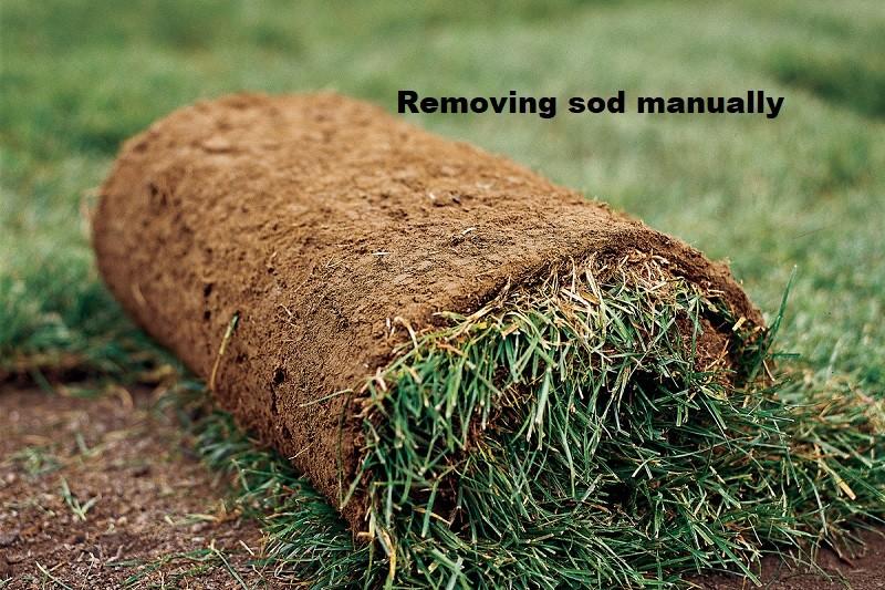Removing sod manually