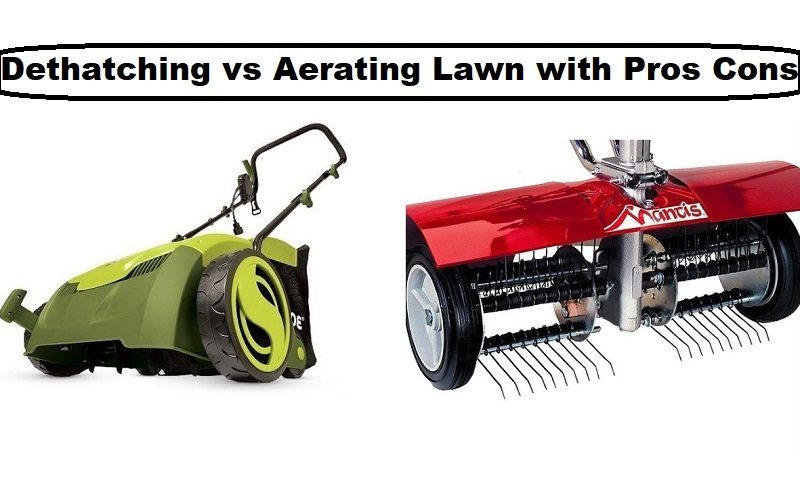 Dethatching vs aerating lawn with pros cons