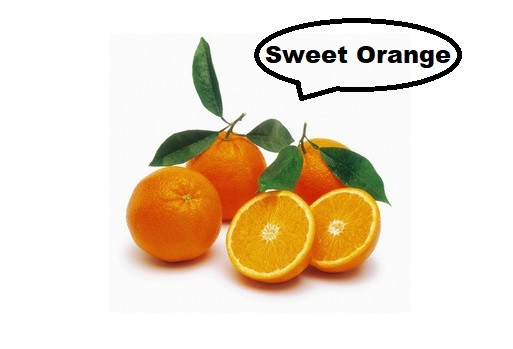How to grow sweeter oranges Best 5 ways