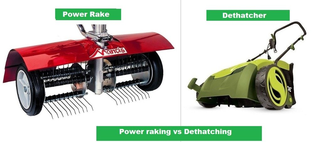 Power raking vs Dethatching Power rakes vs Dethatchers