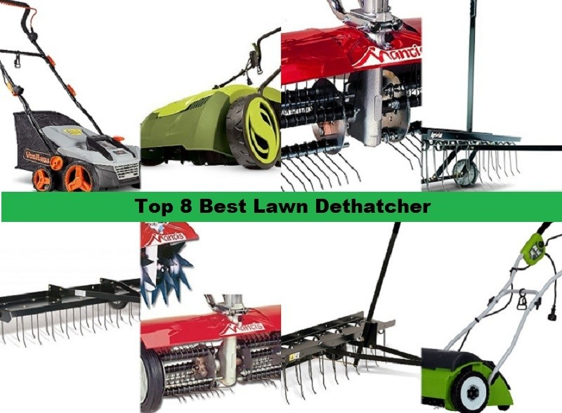 Top 8 Best Lawn Dethatcher