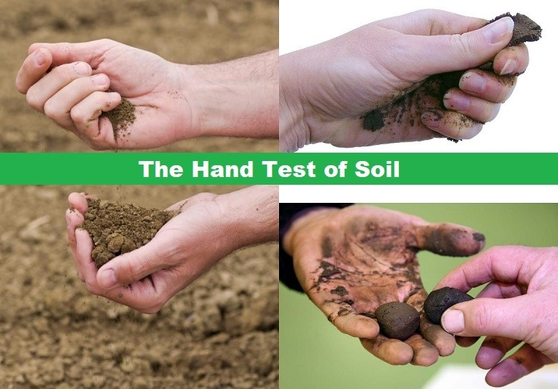 Tests on soil for gardening and lawn