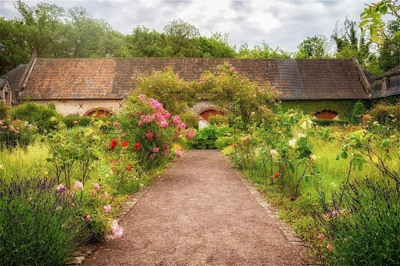 Site selection for herb gardening