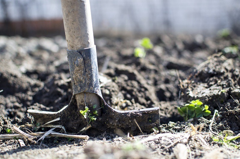 soil for herb gardening