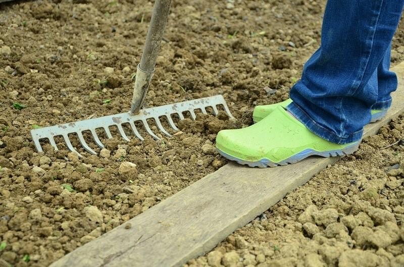 Soil preparation for herb gardening