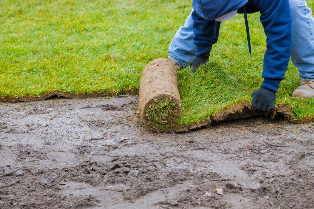 how to cut sod cutting and laying
