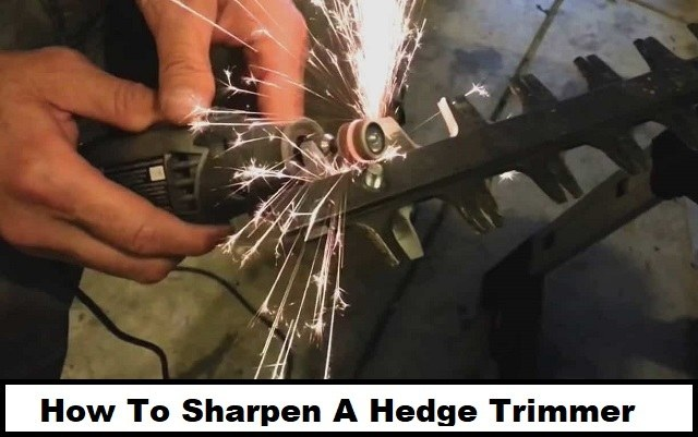 How To Sharpen A Hedge Trimmer Black And Decker